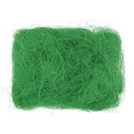 Сизаль зеленая