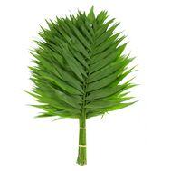 Лист пальмы Чико 45 см