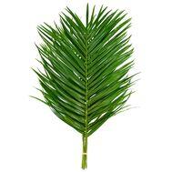 Лист пальмы Феникс 60 см, фото 1